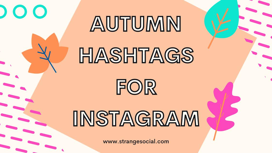 Autumn hashtags for Instagram